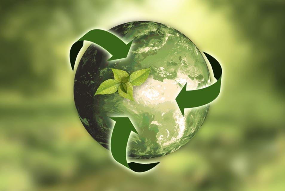 Millennial entrepreneurs eco-minded image 1113