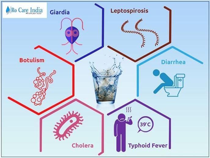 Waterborne disease image 4444