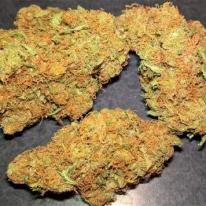 Incredible Hulk Sativa Strain