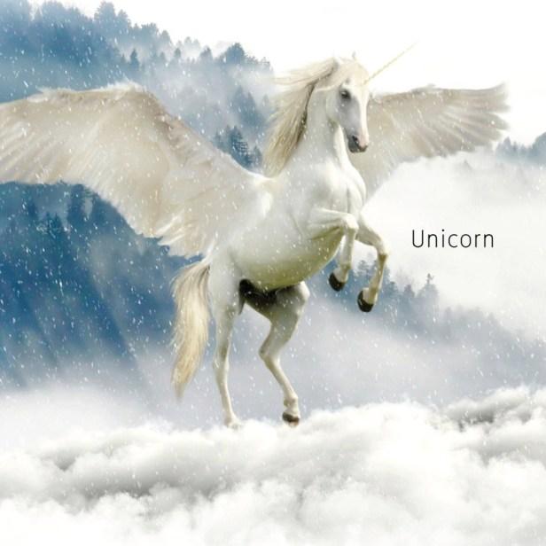 Unicorn คือ