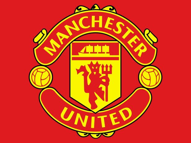 Man U logo team viewer