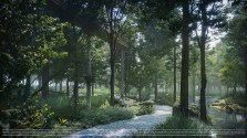 3. The Forestias Walkway in forest