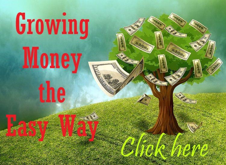 Growing Money the Easy Way 1