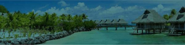 screen dvider 2 for the aimviva travel club newsletter