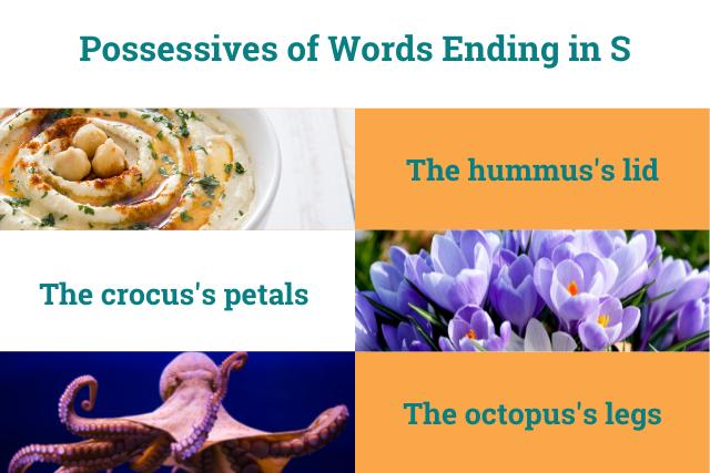 Possesives of words ending in S