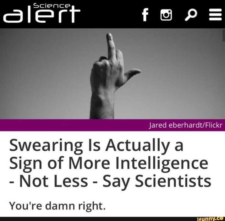 viral meme image of profanity as intelligence