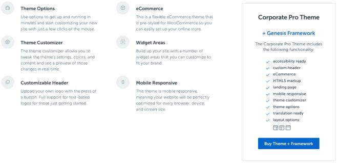 google amp wordpress theme