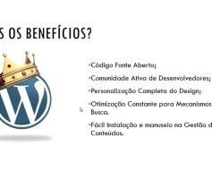 O que é wordpress e Como funciona?