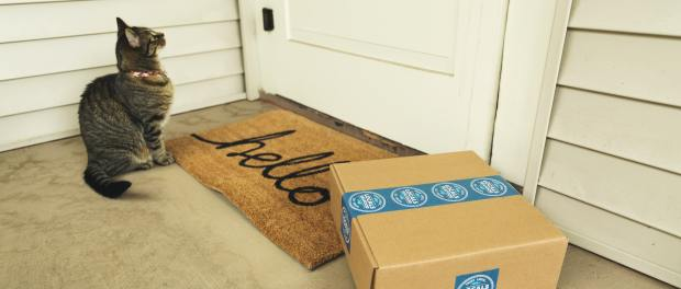 A cat sitting next to a parcel at a front door.