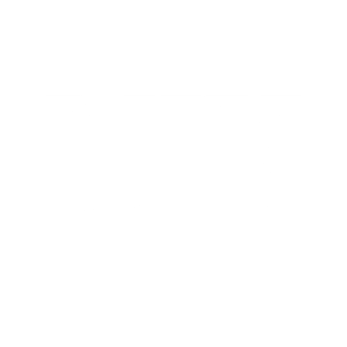 MIX Logo White
