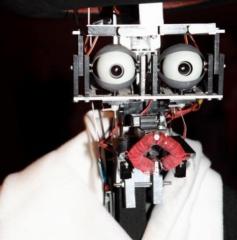 Robot Berenson.jpg