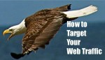 How-to-Target-Your- Web-Traffic