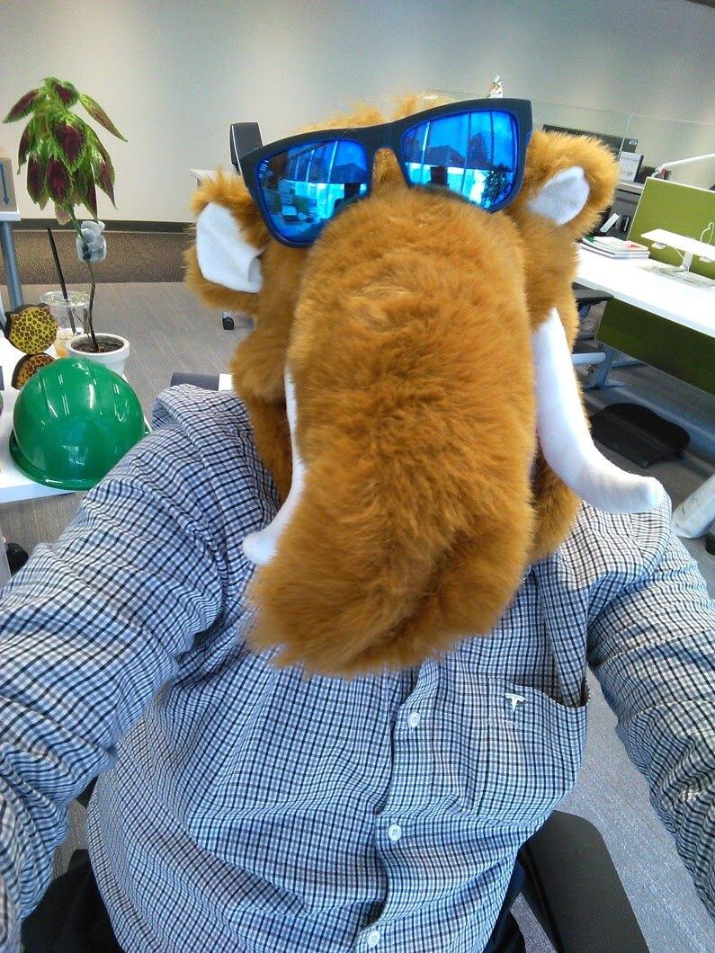 Googlers wearing masks at work