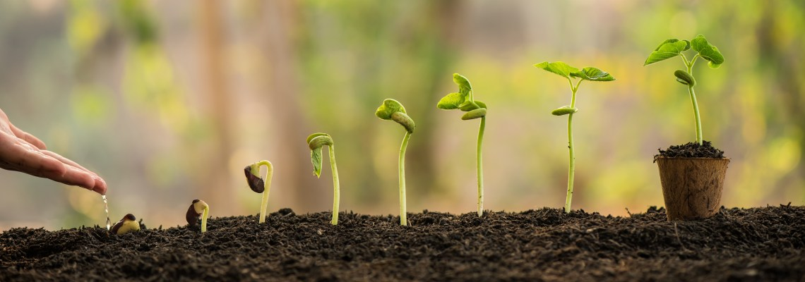 Lead Nurturing Tips for 2021