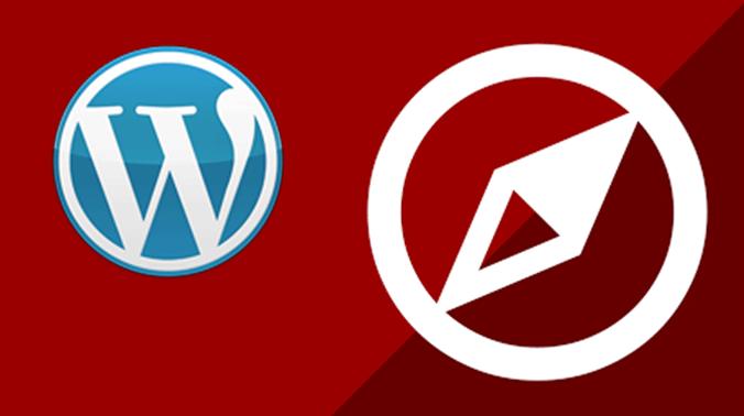 How To Setup Schema In WordPress Site