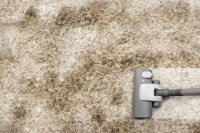 3 Signs Your Home Is Ready for a Carpet Cleaning ...
