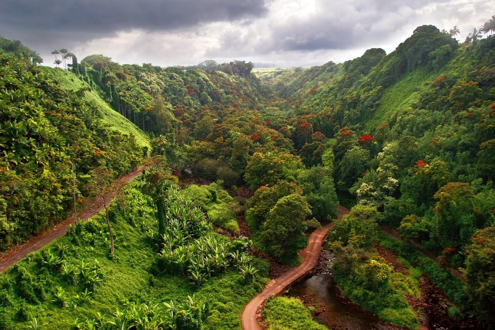 Akaka Falls Wallpaper Discover The History Of Island Princess Hawaii Chocolate