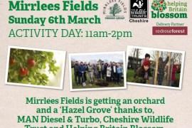 Mirrlees Fields - home of a new Hazel Grove