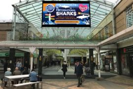 Merseyway Digital Screen