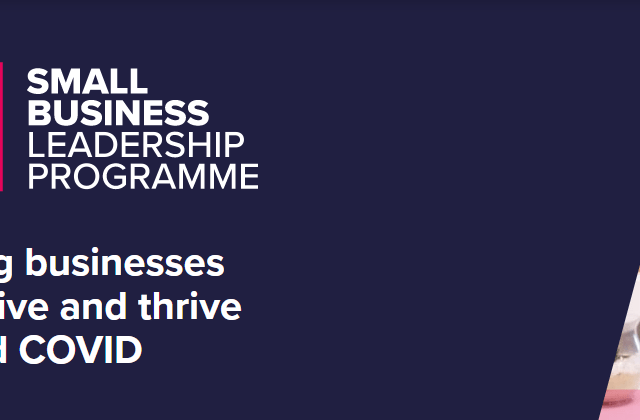Small Business Leadership Programme announced to aid economic recovery