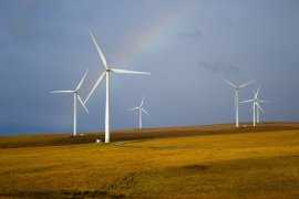 Regional investment funds support businesses to reach net-zero carbon emissions