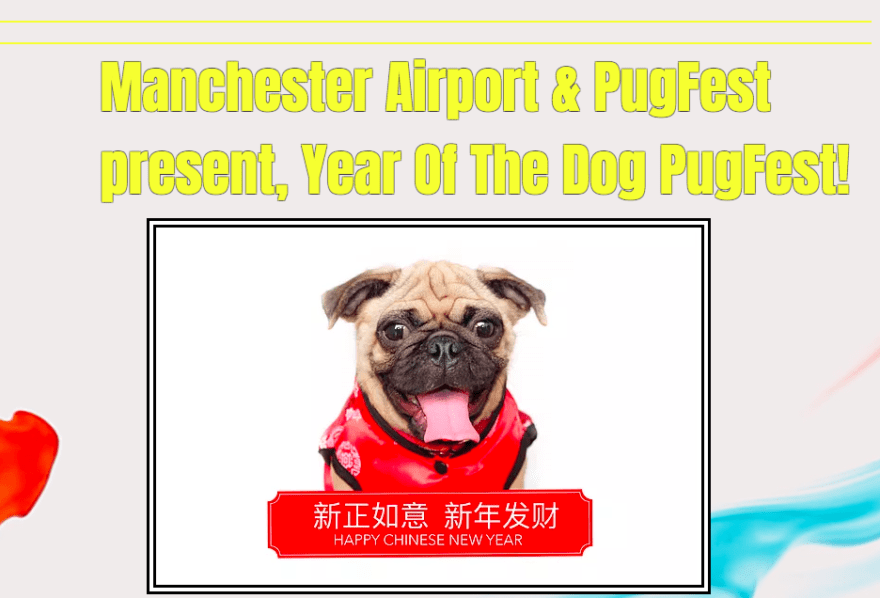 Manchester Airport celebrates Chinese New Year of the Dog with Pugfest