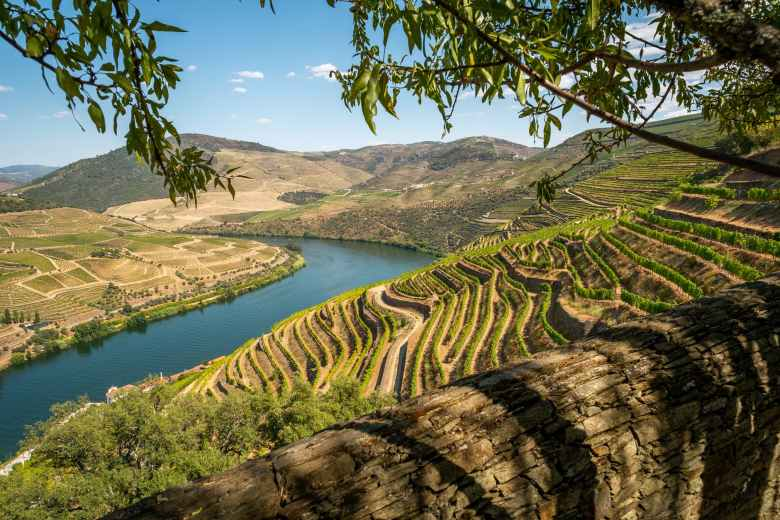 landscape photography of brown and green mountain ranges - Douro