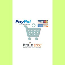 E-Commerce payment braintree paypal and credit cards