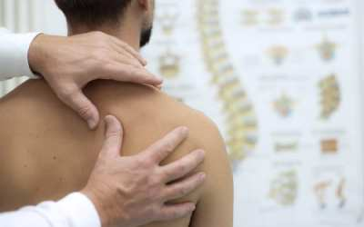 SEO keywords for Chiropractors