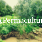 Permaculture: the Future Local Farmer