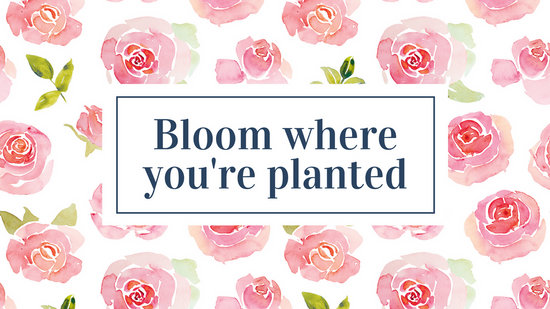 Watercolor Wallpaper Backgrounds Quote Roses Pattern Quote Flower Desktop Wallpaper Templates