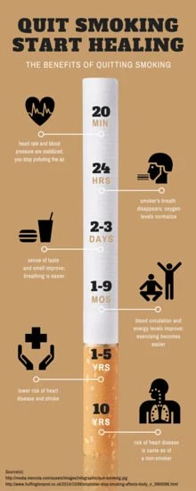 Quit Smoking Timeline Infographic  Templates by Canva