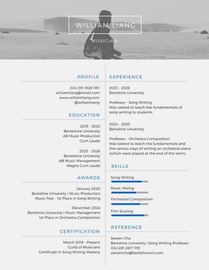 modern professional resume template 2017