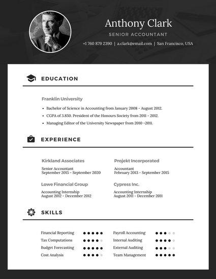 best examples of online resumes