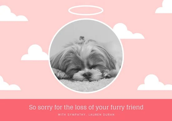 Customize 162 Pet Sympathy Card Templates Online Canva