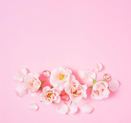 pink background free premium