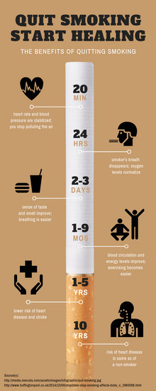 Customize 29 Timeline Infographic templates online  Canva