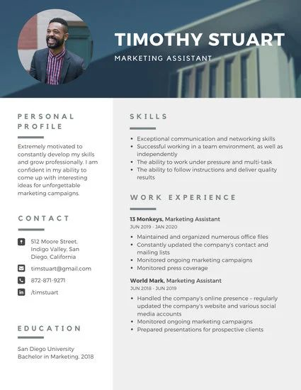 sample contemporary resume design template