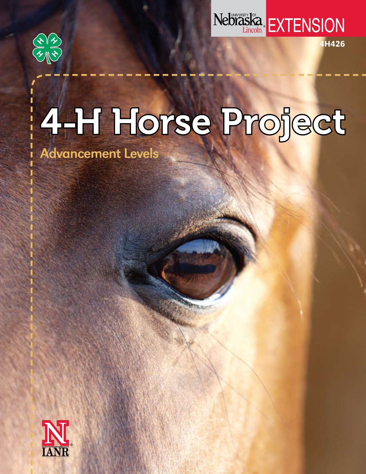 4 H Horse Project Advancement Level