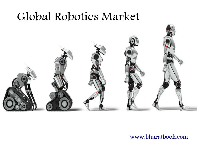 Global Robotics Market Survey and Trend Research 2024