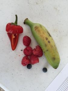Some true berries and raspberries, which are actually a collection of a different kind of fruit--a bunch of drupes.