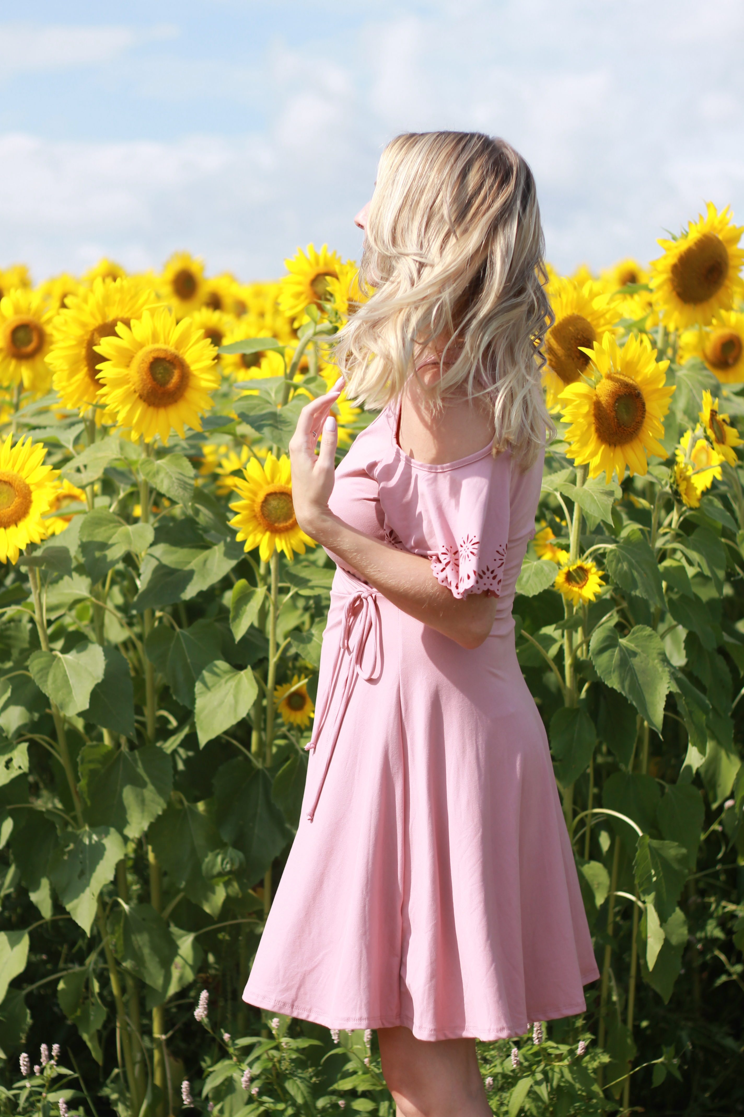Sunflower fields at Colby Farm | Dress from Francesca's