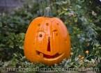 Halloweenkürbis6