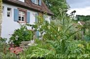 Bleichheim 40