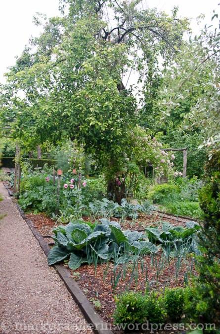 Garten Marguerite15