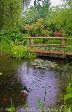 Garten Marguerite42