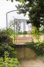 Garten Marguerite5