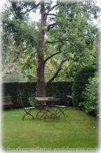 Garten Marguerite62