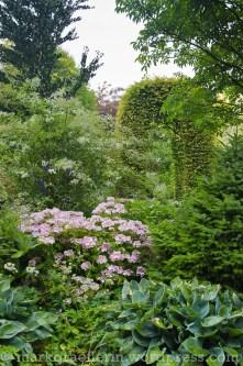 Garten Marguerite9