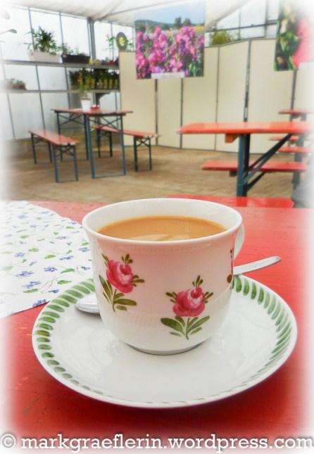 Kaffee im Gewächshaus